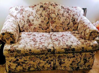 Love Seat Sleeper Sofa