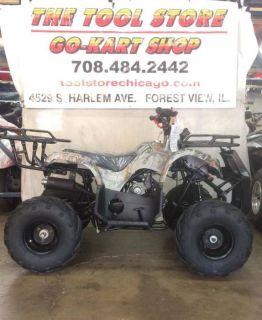 2018 Taotao USA D125 ATV Off Road Forest View, IL