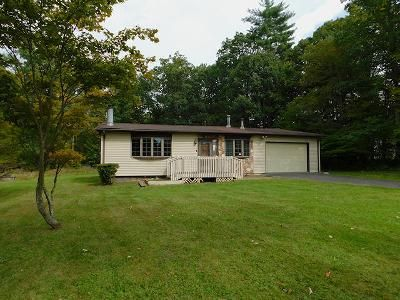 2 Bed 2 Bath Foreclosure Property in Pine Bush, NY 12566 - Indian Springs Rd
