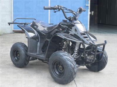 ATV (PAH110-2) Metallic Black