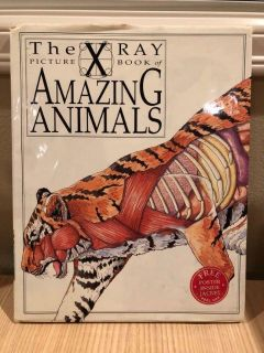 The X Ray Picture Book of Amazing Animals. Hardcover