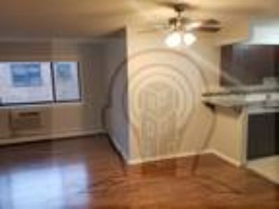 0 BR One BA In CHICAGO IL 60660