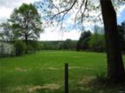 Real Estate For Sale - Land 10.3000