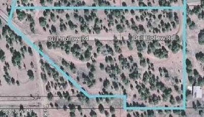 1841 BULL HOLLOW Road Show Low, Great parcel to share with