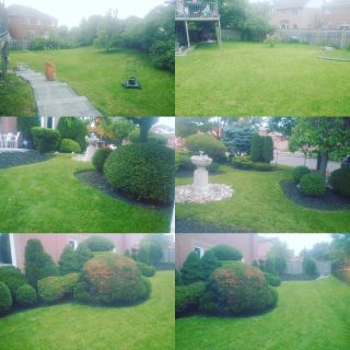 Lawn and Property Maintenance - One time or seasonal