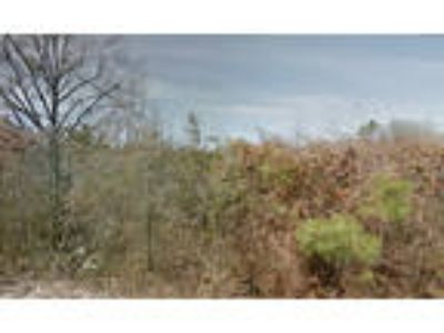 Mobile Home Land For Sale In Pine Pluff, Arkansas