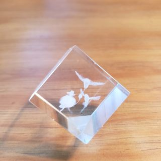 Glass cube with hummingbirds etched inside