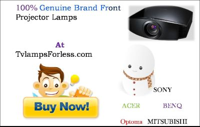 VIEWSONIC RLC-061 PROJECTOR LAMP
