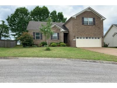 3 Bath Preforeclosure Property in Spring Hill, TN 37174 - Tiger Ct