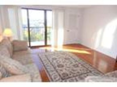New Listing! Spacious One BR Across from Wellington! Pool! Central a/C! Avail 9-