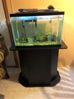 20gallon fish tank all included