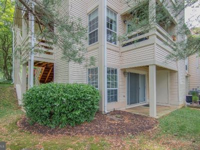Roomate Wanted to Share 2BR 2BA Apartment