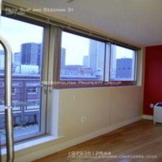 Two Bridges - South St. SeaPort, 2 bedroom / 2 bath , 1200 sq ft Luxury  LOFT ,  NOFEE