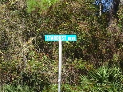 Foreclosure Property in Crescent City, FL 32112 - Lake Dr