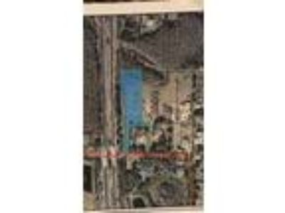 Land for Sale by owner in Greater Northdale, FL