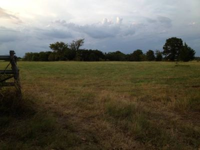 Land For Sale (Dike,TX)