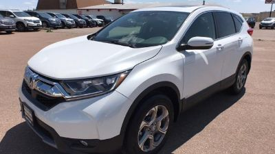 2019 Honda CR-V (Platinum White Pearl)