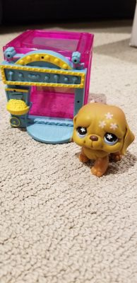 Puppy littlest pet shop and home