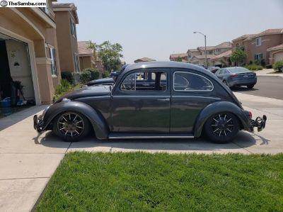 1964- Bug