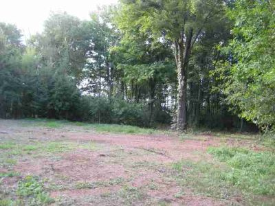 4173 Cottage Road Mosinee, Private 2.87 Acre Wooded Parcel