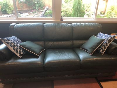 Leather couch - green