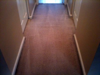 IICRC Trained & Certified - Carpet, Uph, Tile...