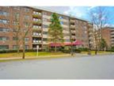 Real Estate For Sale - Two BR One BA Co-op