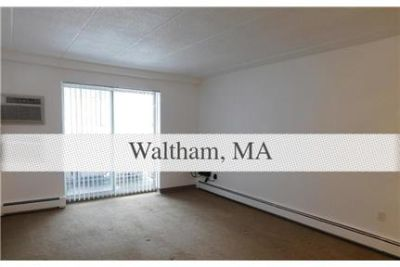 This rental is a Waltham apartment Lexington.