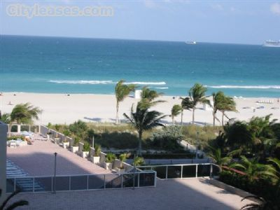One Bedroom In South Beach
