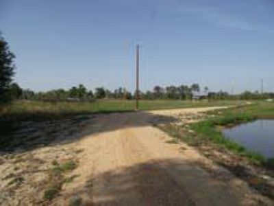 4.5 to 5 acres with owner financing (poplarville )