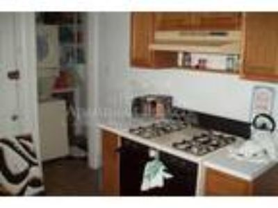 TRENDY BRAND NEW Three BR One BA Apartment ONE OF A KIND