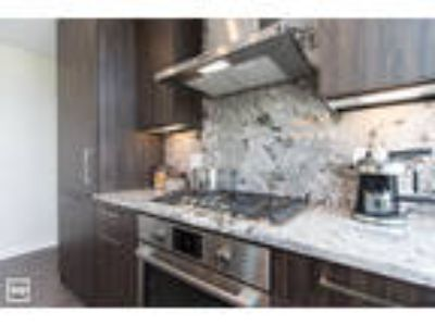 RIVER NORTH: Brand New, Pool, Roof Deck, Fitness Suite, Balcony, W/D