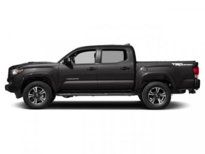 2019 Toyota Tacoma 4WD TRD Sport (Magnetic Gray Metallic)