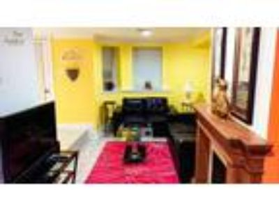 Great Location/Large Apartment/Lots of Light/ High Ceilings/