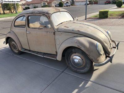 Survivor 1947 Beetle