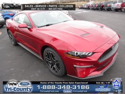 2018 Ford Mustang EcoBoost (Ruby Red Metallic Tinted Clearcoat)