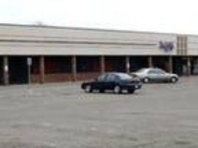 Retail-Commercial for Lease: Ypsilanti Strip Center Retail for Lease -