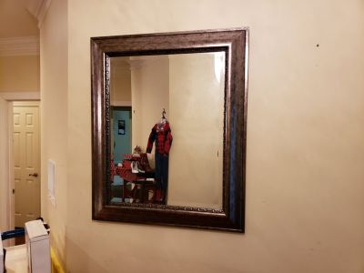 Kirkland 30X36 Wall Mirror!