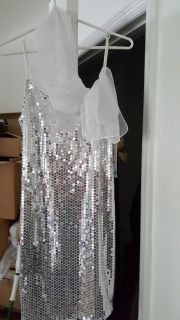 Gorgeous Silver Sequin Dress NEW