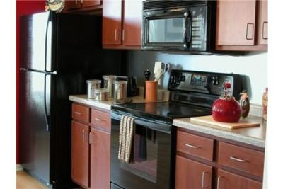 3 bedrooms Apartment - Located in the heart of downtown Minneapolis.