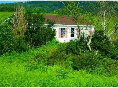 3 Bed 1 Bath Foreclosure Property in Salem, NY 12865 - Halls Pond Rd
