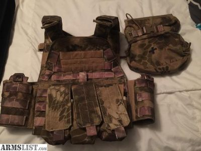 For Sale: Plate Carrier
