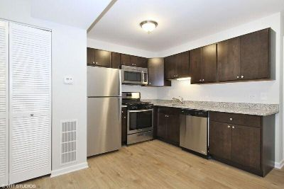 Reverb Oak Lawn Unit! In-Unit Washer/Dryer, SS Appl., & Parking Incl.!