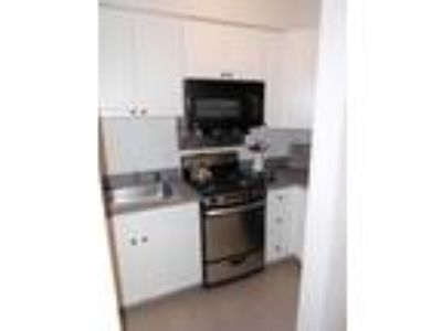 This great One BR, One BA sunny apartment is located in the Kenmore area on