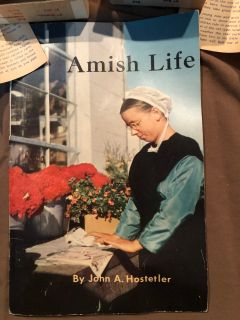 VINTAGE COLLECTOR SET OF AMISH DOLLS AND BOOK!