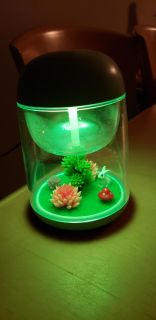 Micro landscape humidifier- use as a light , humidifier part doesn't work