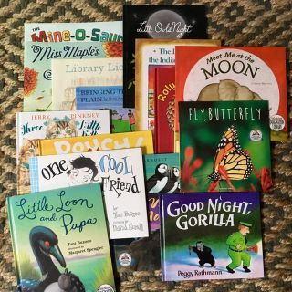 Picture Story Books