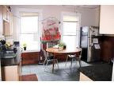 Stylish Large Four BR One BA Apartment Modern Kitchen Spacious Rooms