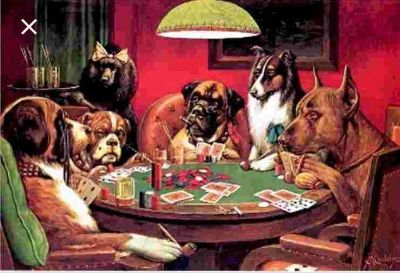 Looking for dogs playing poker