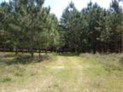 Land for Sale by owner in Bushnell, FL